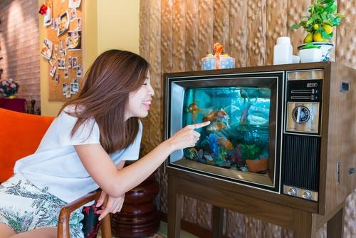 fishtank in TV.jpg