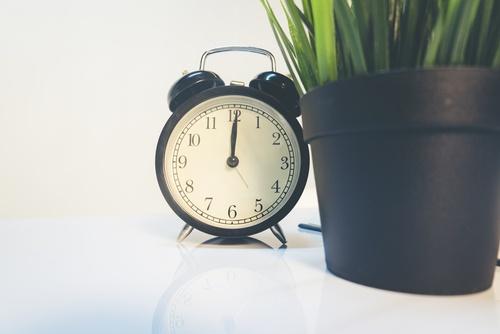 time passing, clock plant.jpg