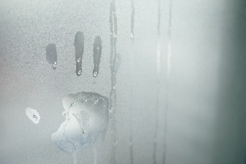 fog a mirror